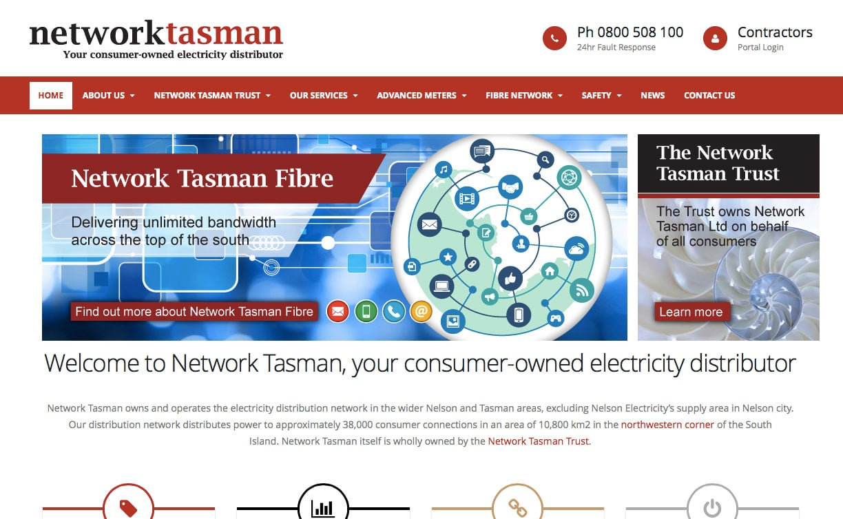 Network Tasman website design sample 1