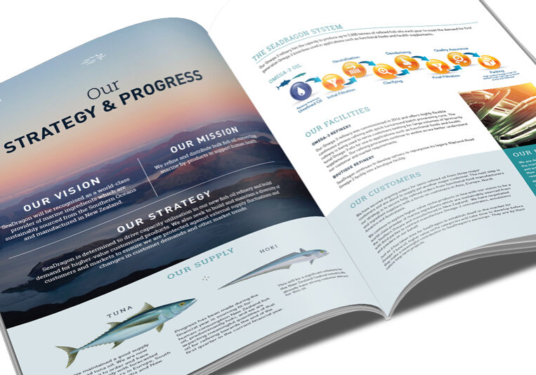 SeaDragon annual report layout design
