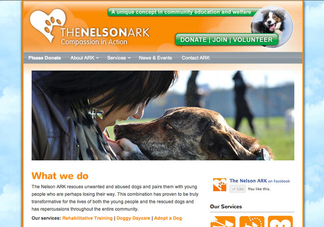 Nelson Ark wordpress website